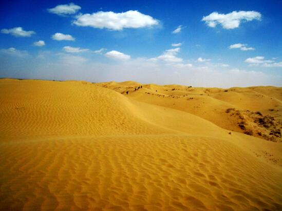 呼包鄂千人穿越沙漠  云狐相机记录不平凡的美