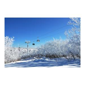 京张申办场馆考察结束 张家口赛区成滑雪胜地