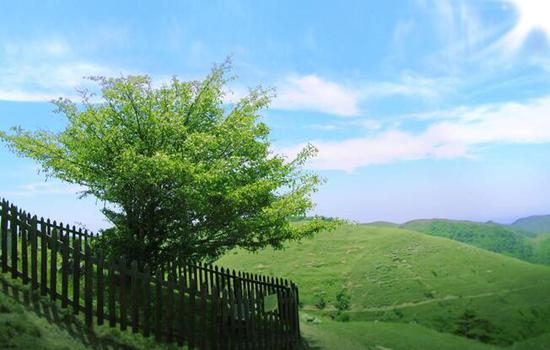 什么 中國南方還有草原?
