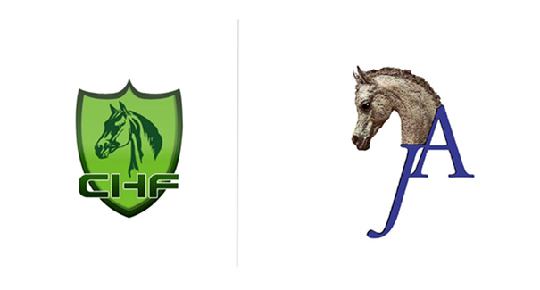来CHF 2017探秘欧洲伯乐阿拉伯马基地Jadem Arabians BVBA(展位号:C29) ... ...