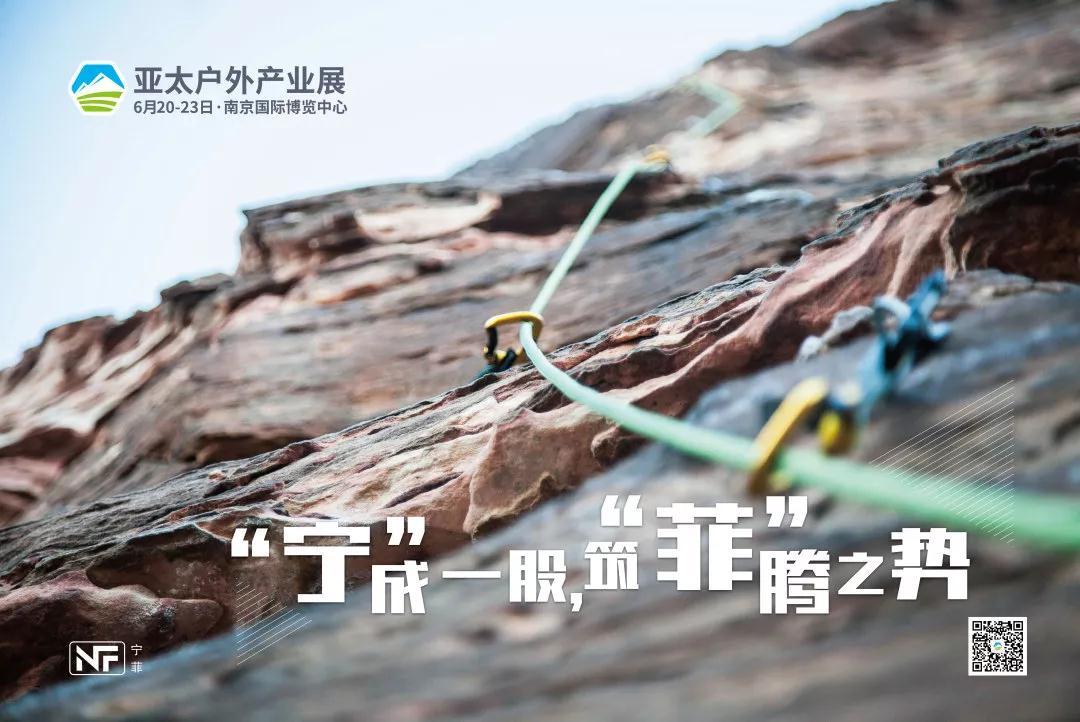 """寧菲公司:""""寧""""成一股,筑""""菲""""騰之勢"""