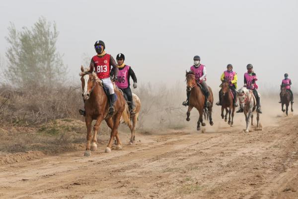 第五届中国砀山国际马术耐力赛在黄河故道举行促文旅产业升级 ...