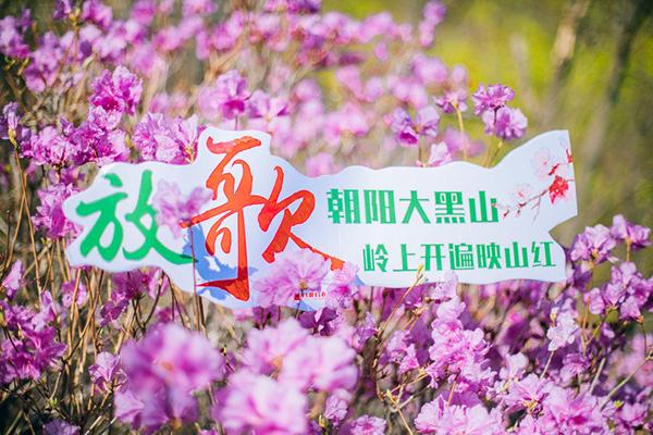 放歌朝陽大黑山——大黑山風景區2019春季旅行攻略