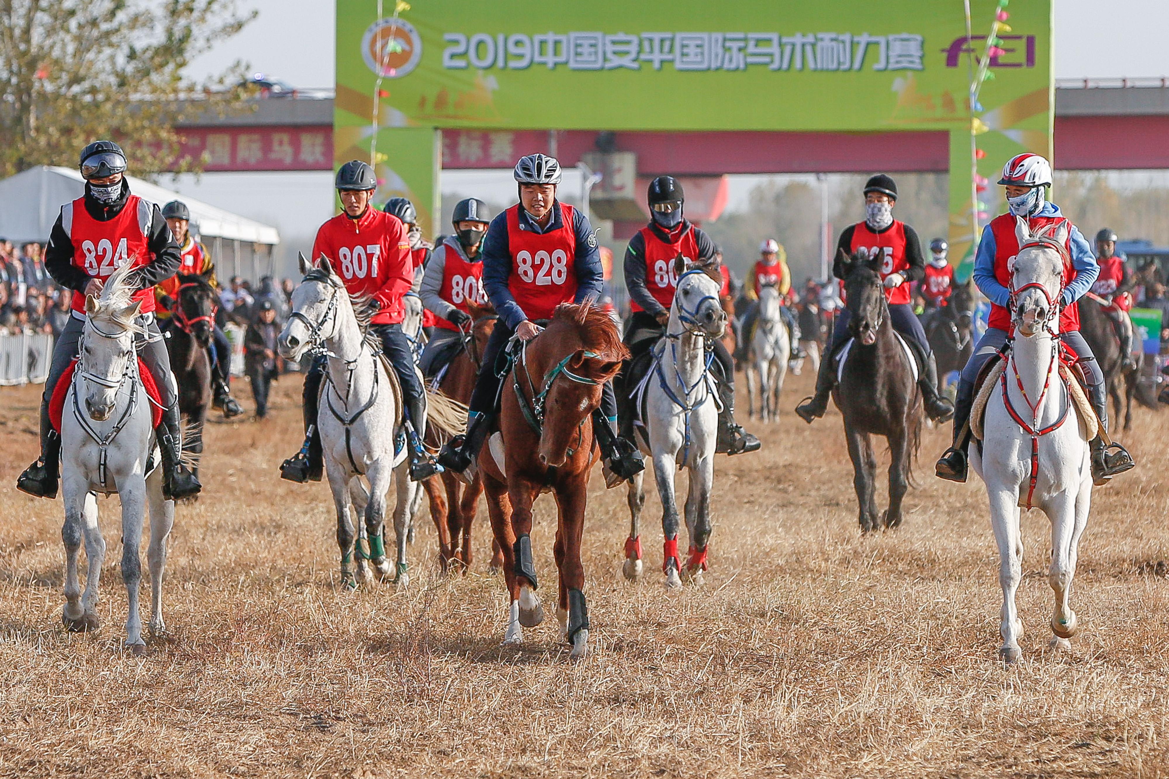 2019中國安平國際馬術耐力賽舉行促文體旅游業健康發展